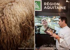 Reportage :: Le Salon de l'Agriculture 2015