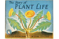 Story of Plant Life.jpg