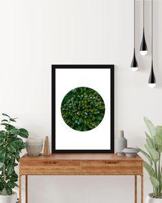 Circle of Nature Poster