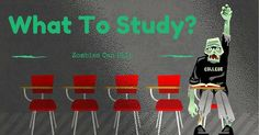 What To Study In College: What Zombies Can Teach You