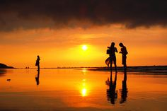 sunset-827tt