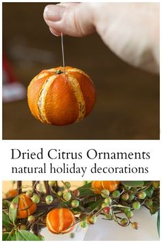 Dried citrus ornaments are fun to use in your home decor. Their natural beauty really shines and you can make your own with these tips. #DriedCitrus #DIYOrnaments #ChristmasDecor