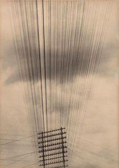 """"""" Tina Modotti, Telegraph Wires, 1925 """""""