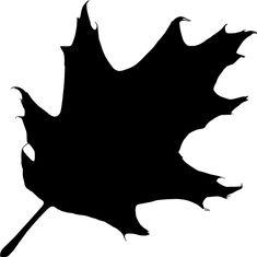 Oak, Autumn, Leaf, Nature, Silhouette