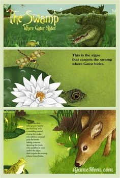 The Swamp Where Gator Hides is a non-fiction picture book for kids. Kids learn about animals living around the swamp via the eye of an alligator. Learning Apps, Stem Learning, Outdoor Learning, Kids Learning, Preschool Science Activities, Library Activities, Activities For Kids, Science Ideas, Alligators