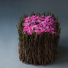 Winter #02 Winter, Artist, Flowers, Plants, Home Decor, Winter Time, Decoration Home, Room Decor, Artists