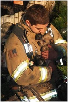 Firefighters rescuing a puppy | Shared by LION