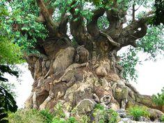 """""""The Tree of Life"""" è l'emblema di Animal Kigdom, parco a tema di Walt Disney World, ad Orlando, in Florida. Questo (albero della vita) è un albero artificiale di 45 metri d'altezza che ha inciso tra le radici ed il tronco ben 325 immagini di animali. All'interno si trova """"It's Tough To Be e Bug"""", spettacolo 3D che racconta quanto sia difficile, a volte, essere un insetto"""
