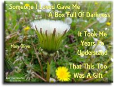 Someone I loved gave me a box full of darkness, it took me years to understand that this too was a gift - Mary Oliver - Spiritual Quotes To Live By