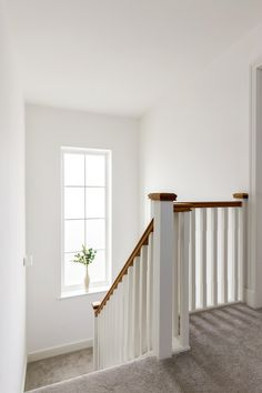 Window letting loads of natural light in. Nude Color, Colour, White Staircase, Open Plan Kitchen, Natural Light, Carpet, Stairs, Windows, Bedroom