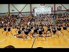 Central Cheerleaders dance at Meet the Wildcats pep rally 2015-2016 - YouTube