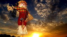 Looking for some scarecrow ideas for your homestead? If you're getting tired of your scarecrow, then try your skills on these creative scarecrow ideas.