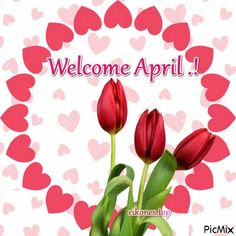 Top Pictures for Hello-Welcome April - eikones top April April, Hello Welcome, Creations, Greeting Cards, Pictures, Top, Craft Studios, Seasons, Photos
