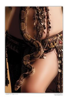 One of my all time favorite portraits - Bellydancer with Red-Tail Boa..I have this print hanging in my bedroom.
