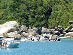 Ilha do arvoredo - Florianópolis - SC