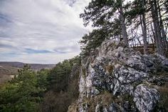 Koloska-völgy – Google Kereső