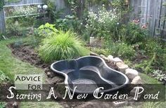 Tips for Starting a Small Garden Pond Advice For Starting A New Garden Pond Ponds For Small Gardens, Little Gardens, Small Ponds, Backyard Water Feature, Ponds Backyard, Garden Ponds, Backyard Ideas, Pond Landscaping, Landscaping With Rocks