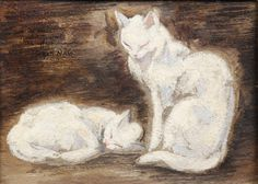 two white cats | by Jacques Nam