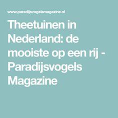 Theetuinen in Nederland: de mooiste op een rij - Paradijsvogels Magazine