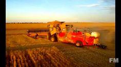 Wheat Harvest North Dakota, Australia 2007. !FM!.