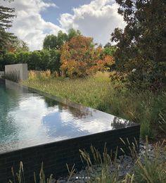 90 best living pool images on pinterest in 2018 landscaping rh pinterest com