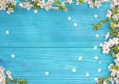 Blue wood floor photography backdrop for newborn Flower Background Wallpaper, Flower Backgrounds, Colorful Backgrounds, Picture Backdrops, Vinyl Backdrops, Spring Desktop Wallpaper, Iphone Wallpaper, Screen Wallpaper, Fabric Backdrop
