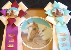 Awesome Southwest theme rosettes used for the Phoenix Show Circuit shows.