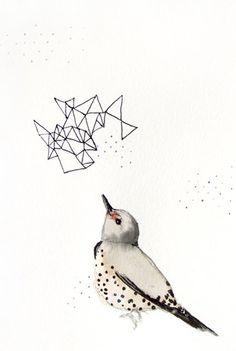 Northern Flicker - Art Prints by Mai Autumn