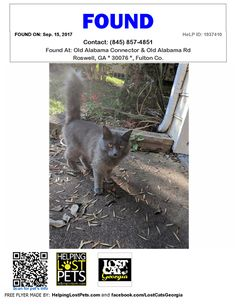 Found Cat - Roswell GA - Sep.15 2017 Closest Intersection: Old Alabama Connector & Old Alabama Rd County: Fulton  Do you know this Cat? #Roswell (Old Alabama Connector & Old Alabama Rd)  #GA 30076 #Fulton Co.  #Cat 09-15-2017! Gender: Unknown #Unknown Grey/  Very friendly appears to be in good health. would love to find its home!  CONTACT ryan@imrp.co  Phone: (845) 857-4851  More Info Photos and to Contact: http://ift.tt/2w0pemP  To see this pets location on the HelpingLostPets Map…