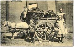17411 Schapenwagen, met erop twee manden en er omheen vi...   Zoek resultaat   Fotohistorisch