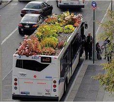 Autobús con techo vivo en Nueva York