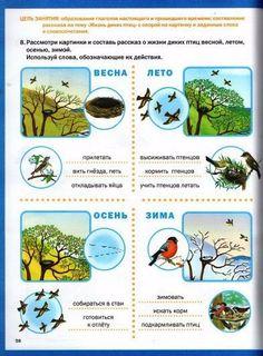 Russian Language, Reggio Emilia, Primary School, Biology, Natural, Homeschool, Birds, Education, Study