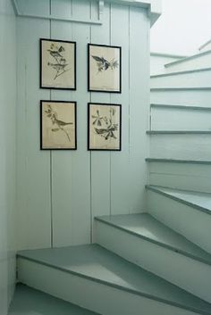 Coastal Style - live the stairs and the color