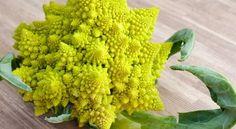 Романеско броколи – убива скуката и засища бързо - Здраве да е!