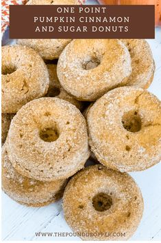 Nothing screams fall than a One Point Pumpkin Cinnamon and Sugar Donuts! Sprinkled with Lakanto Monkfruit Sweetener.
