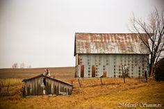 Barns south of Atchison, Kansas