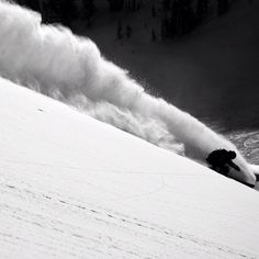 "@tetongravity's photo: ""Powder to the people! @sageca Photo: @acpictures"" #sagecattabriga-alosa"