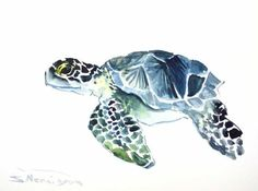 Sea Turtle, Original watercolor painting, 9 X 12 in, indigo blue gray black sea… Watercolor Bird, Watercolor Animals, Watercolor Paintings, Doodle Drawing, Turtle Love, Fauna, Graffiti Art, Cool Art, Art Drawings
