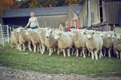 My London: Jayne Duveen of Jacob's Ladder Farms Organic Meat, Jacob's Ladder, London Food, Food Diary, Farms, Interview, Food Journal, Haciendas, Homesteads
