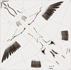 Simply Creative: X-Rays Origami Animals by Takayuki Hori