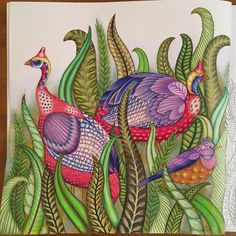 #adultcolouringbook #adultcoloringbook #ilovecoloring #iloveadultcoloringbooks…