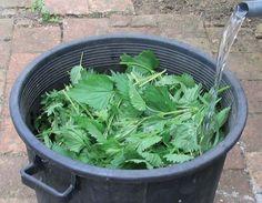 Faire son désherbant naturel pour le jardin - Du purin d'orties fraîches : Faire tremper 2 kg d'orties fraîches dans 10 l d'eau préalablement découpées. Laissez macérer au fond du jardin (à cause des odeurs) pendant 10 jours à température ambiante avoisinant les 20° pour optimiser la macération des orties. Ensuite filtrez votre mixture pour ne récupérer que le jus d'orties que vous pourrez utiliser comme désherbant dans le jardin. Récupérez vos orties qui ont macérés pour enrichir votre…