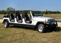Stretched Jeep... for all your wilderness park needs! I think the custom company is in Tennessee.