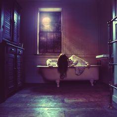 """Twilight"" by Dracorubio"