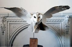 Paper sculptures by Anna Wili Highfield-- she really captures a sense of individual personality in her creatures.