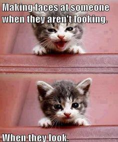 Hahahaha True :P