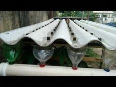 hydroponics system update youtub hidroponia system update hidroponia h - The world's most private search engine Aquaponics Diy, Aquaponics System, Hydroponic Gardening, Organic Gardening, Gardening Tips, Gardening Gloves, Vegetable Gardening, Homemade Hydroponics, Mittleider Gardening