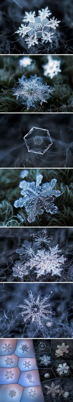 "Snowflakes are gorgeous. Only wish I could see them up close like this when they fall. ""Russian photographer Alexey Kljatov has created an ingenious and inexpensive DIY camera rig capable of capturing excellent close-up pictures of snowflakes. All Nature, Science And Nature, Amazing Nature, Nature Water, Fotografia Macro, Winter Beauty, To Infinity And Beyond, Winter Wonder, Winter Scenes"