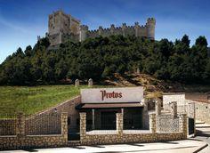 Las bodegas Protos se encuentran en el municipio de Peñafiel, a unos 50 kilómetros de Valladolid. Su ubicación es muy especial ya que la bodega original está situada a los pies de la montaña coronada por el castillo de Peñafiel, que parece fiel guardián de los vinos que allí descansan.