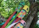 Carp Kite Craft